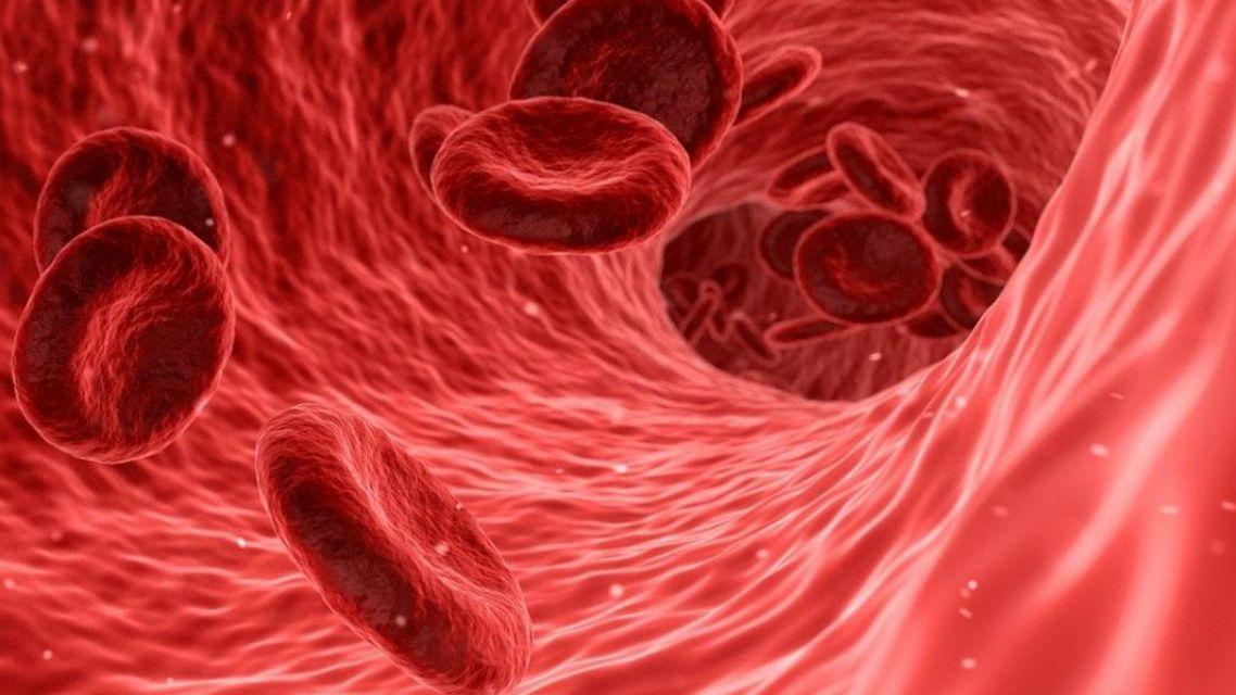Živé vysielanie - Krvná plazma v kontexte imunodeficiencie